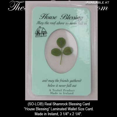 irish blessing real shamrock house blessing card